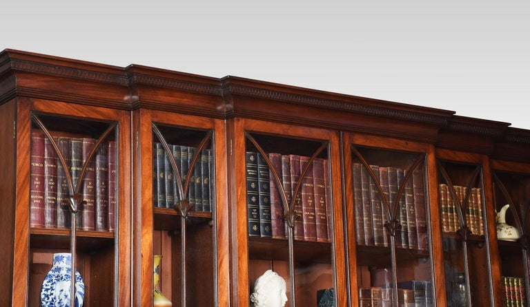 Mahogany Double Breakfront Bookcase For Sale 1
