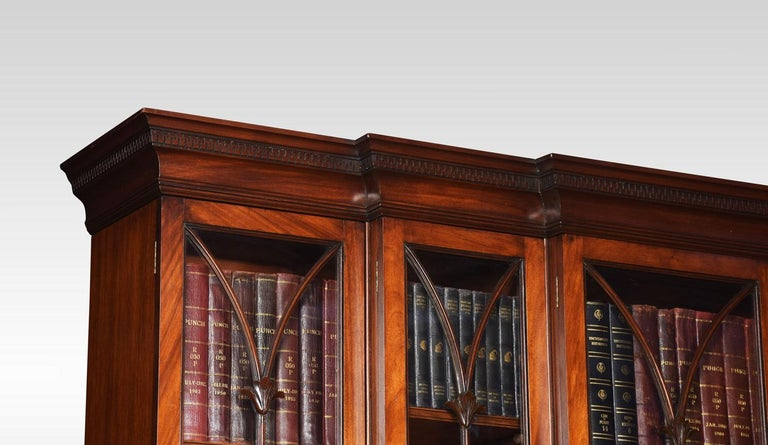 Mahogany Double Breakfront Bookcase For Sale 3