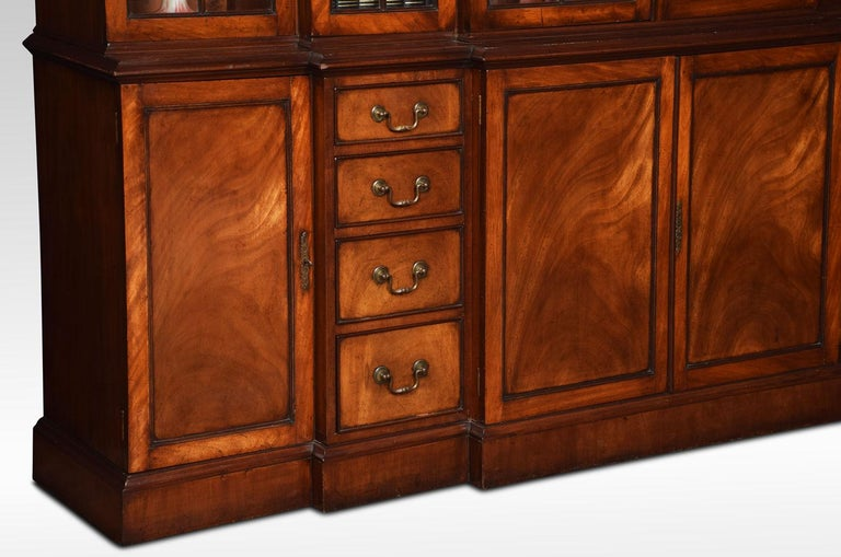 Mahogany Double Breakfront Bookcase For Sale 4