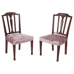 Antique Mahogany Hepplewhite Style Side Chairs