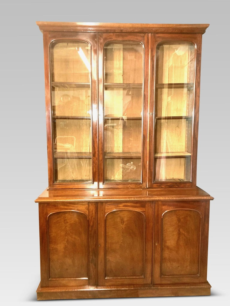 Mahogany Library Bookcase, Original  Bookcase, English, circa 1860 5