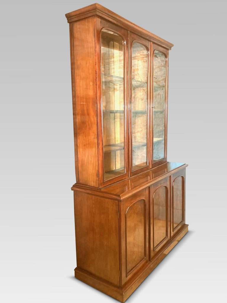 Mahogany Library Bookcase, Original  Bookcase, English, circa 1860 2