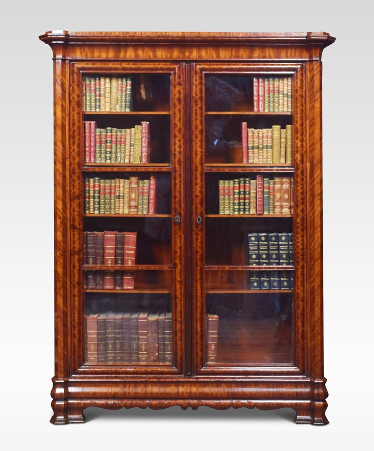 British Mahogany Two-Door Bookcase For Sale