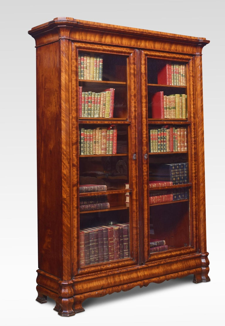 19th Century Mahogany Two-Door Bookcase For Sale