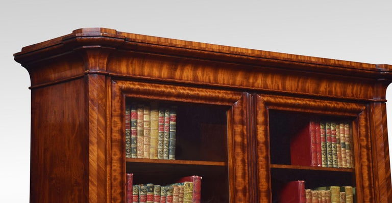 Mahogany Two-Door Bookcase For Sale 2