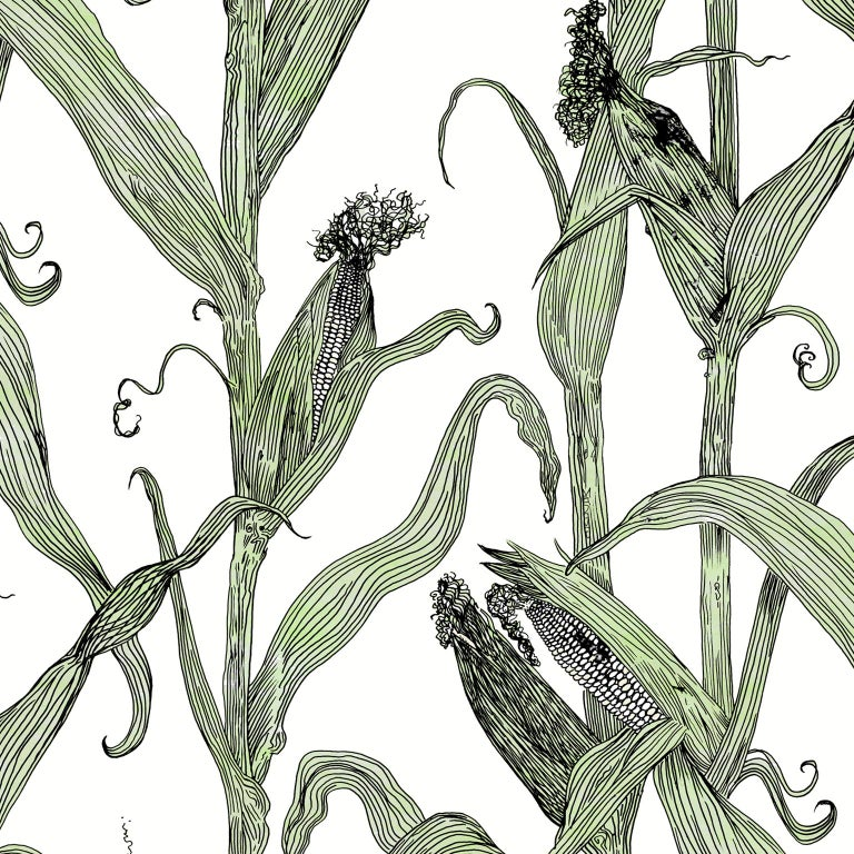 Contemporary Mais-Green Leaf on Pink-Corn Printed Wallpaper For Sale