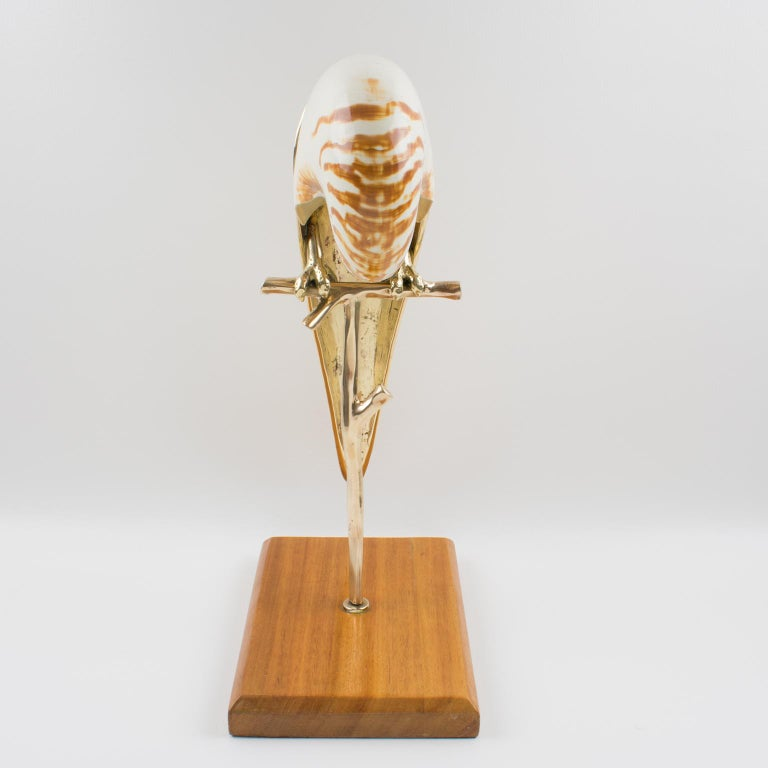 Wood Maitland-Smith Tall Brass and Nautilus Sea Shell Parrot Bird Sculpture For Sale
