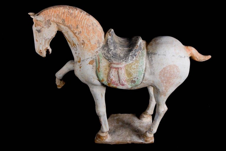 Majestic Prancing Horse, Tang Dynasty, China '618-907 AD', TL Test by Kotalla For Sale 2