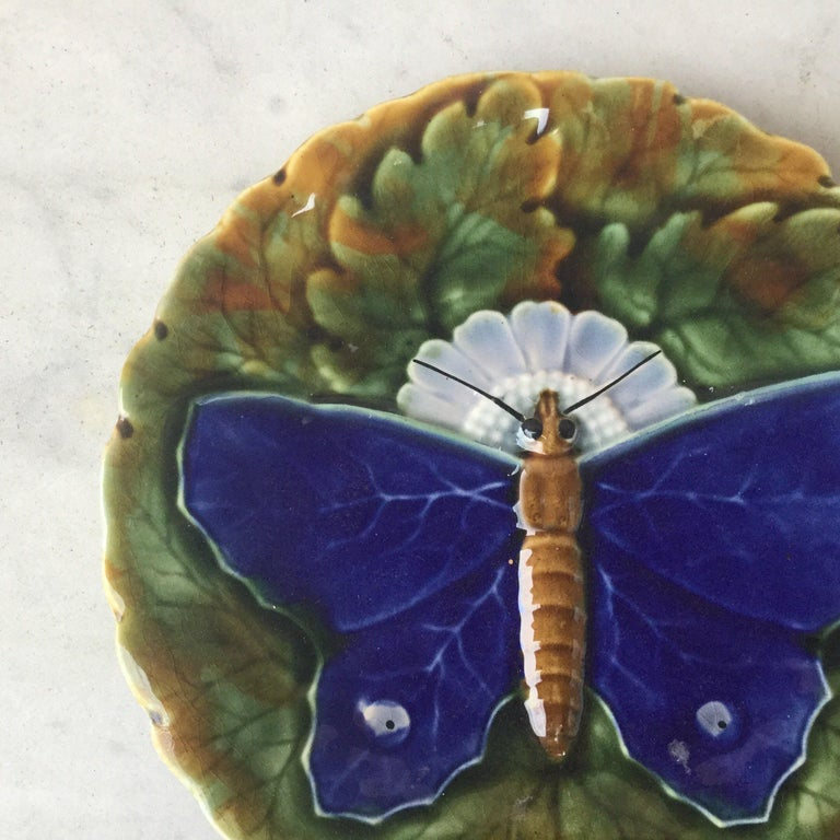 Majolica butterfly plate Josef Steidl Znaim, circa 1890.