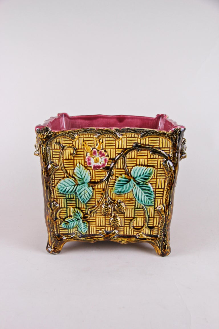 Unusual Majolica cachepot or planter out of France from the beginning of the 20th. This exceptional planter was made out of fine Majolica in a very unique style: namely in the design of a woven basket. The quadratic shaped cachepot is framed by tree