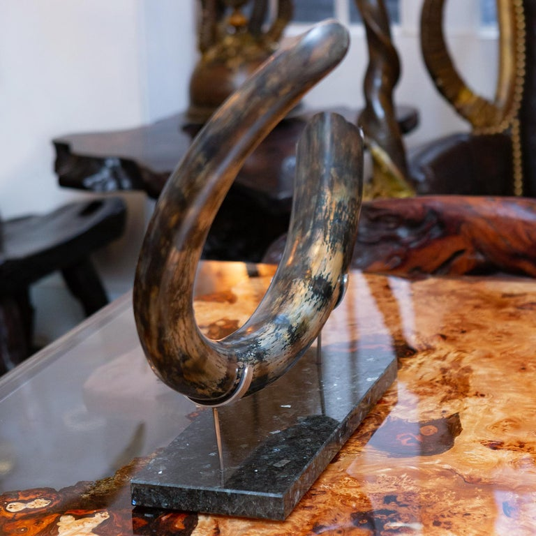 Mammoth Medium Dark Tusk In Excellent Condition For Sale In Paris, FR
