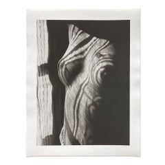 Retour à la Raison, 1923, Silver Gelatin Print, Dada, Surrealist, Modern Art