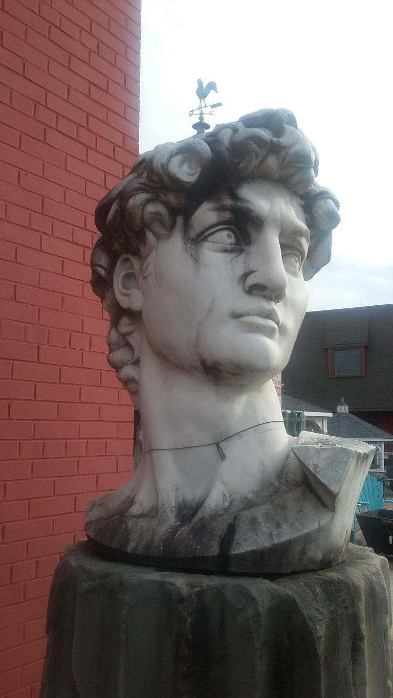 Italian Marble Head Sculpture of David For Sale