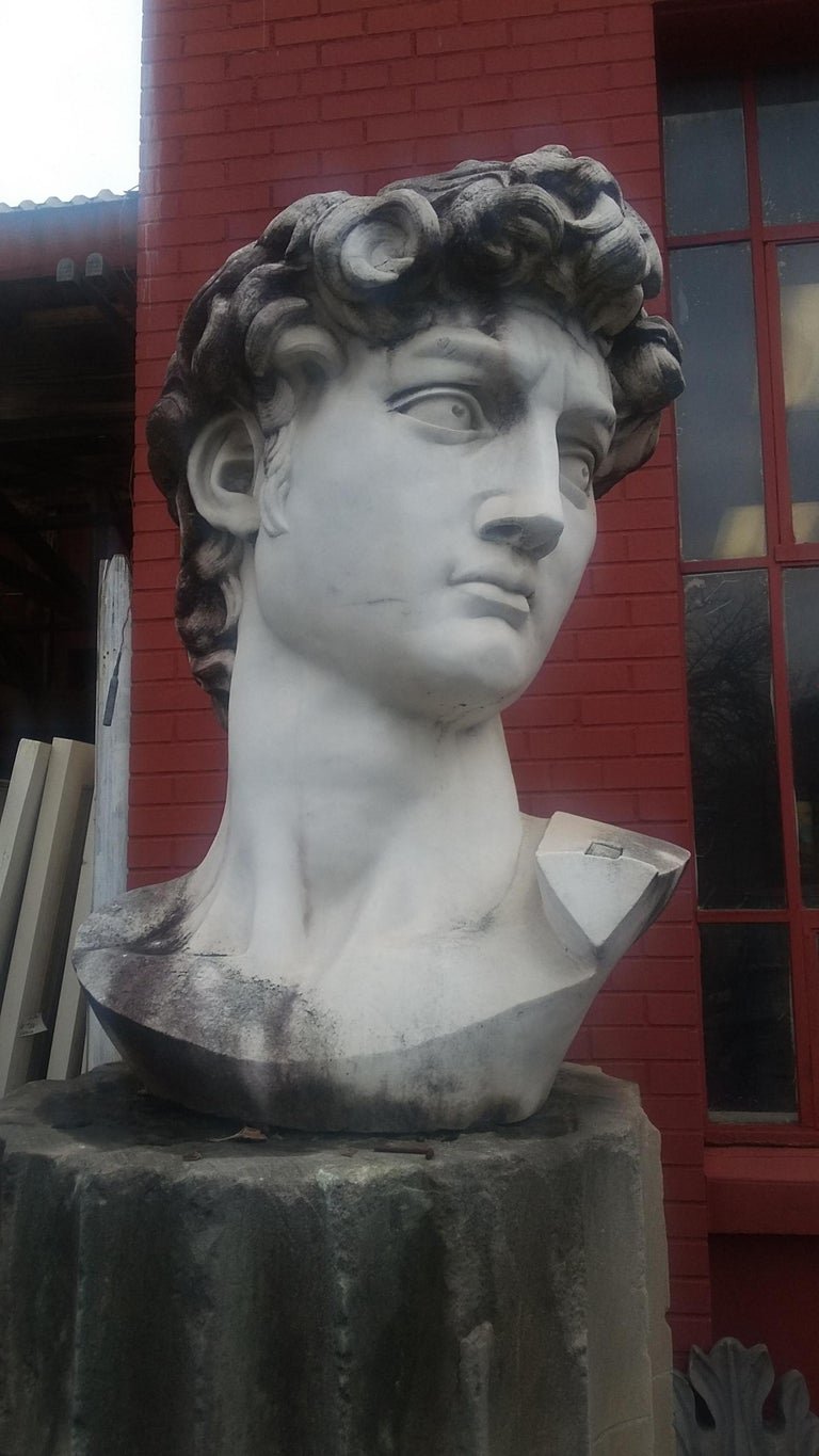 20th Century Marble Head Sculpture of David For Sale