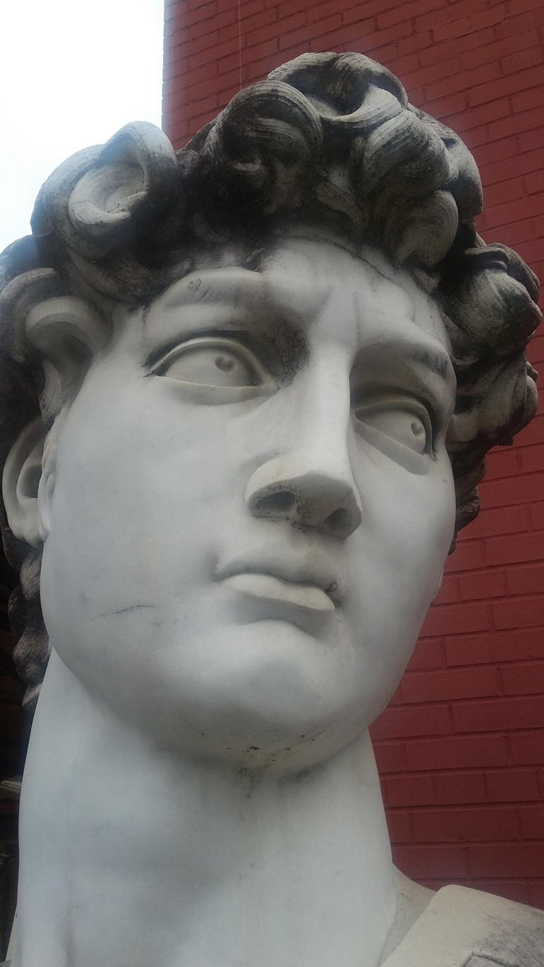 Marble Head Sculpture of David For Sale 1