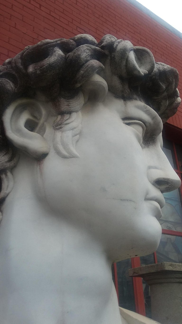 Marble Head Sculpture of David For Sale 2