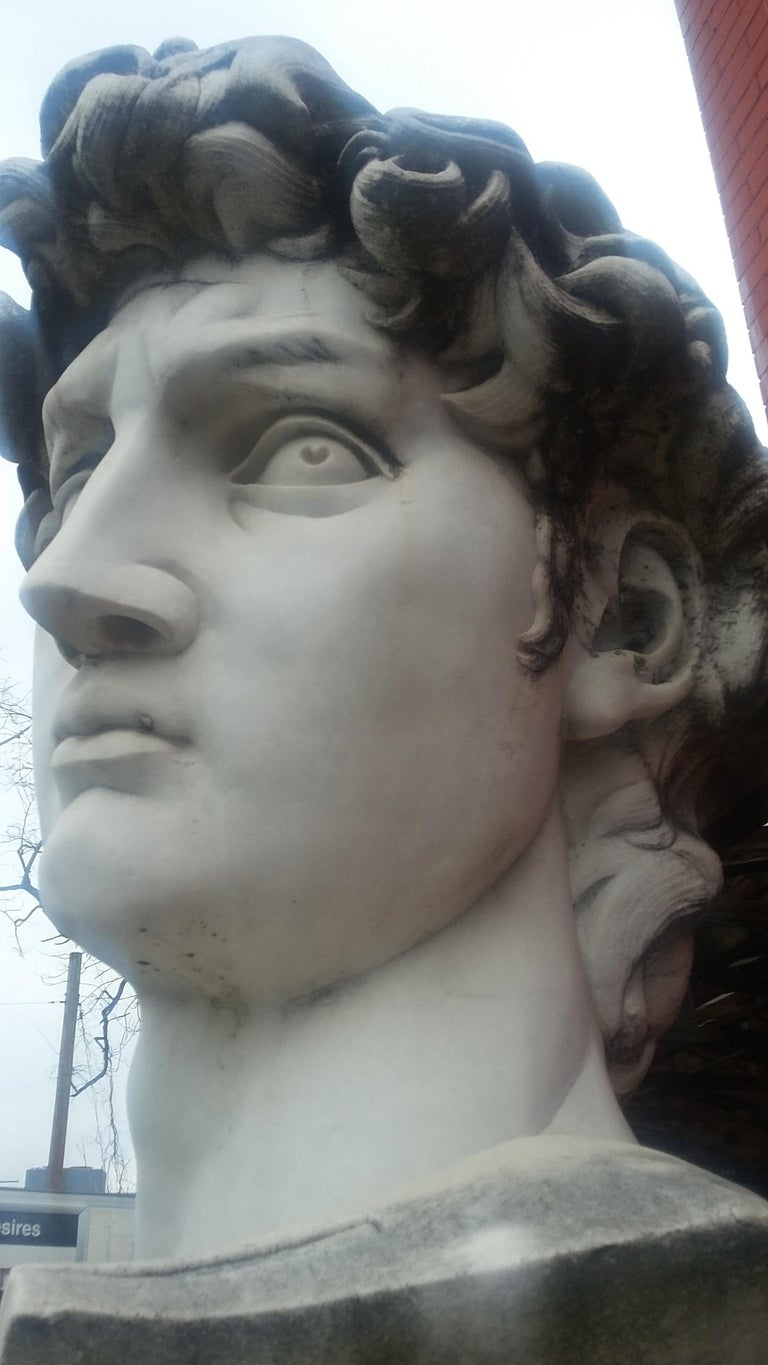 Marble Head Sculpture of David For Sale 3