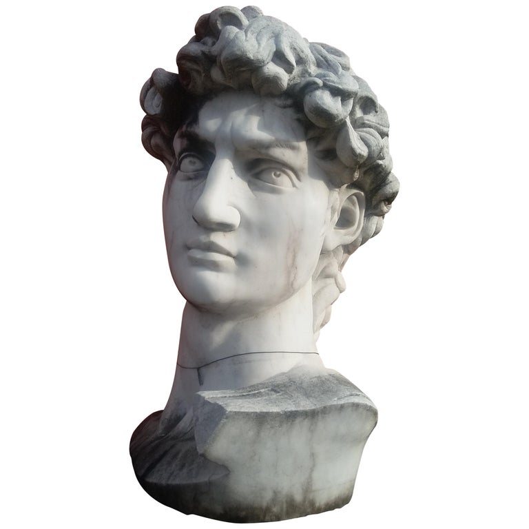 Marble Head Sculpture of David For Sale