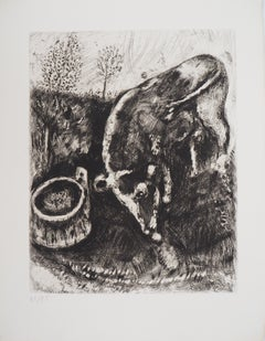 The frog who wanted to be as big as the ox- Original etching - Ref. Sorlier #196