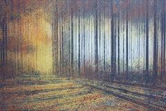 Autumn Trees At Sunset, Painting, Acrylic on Canvas