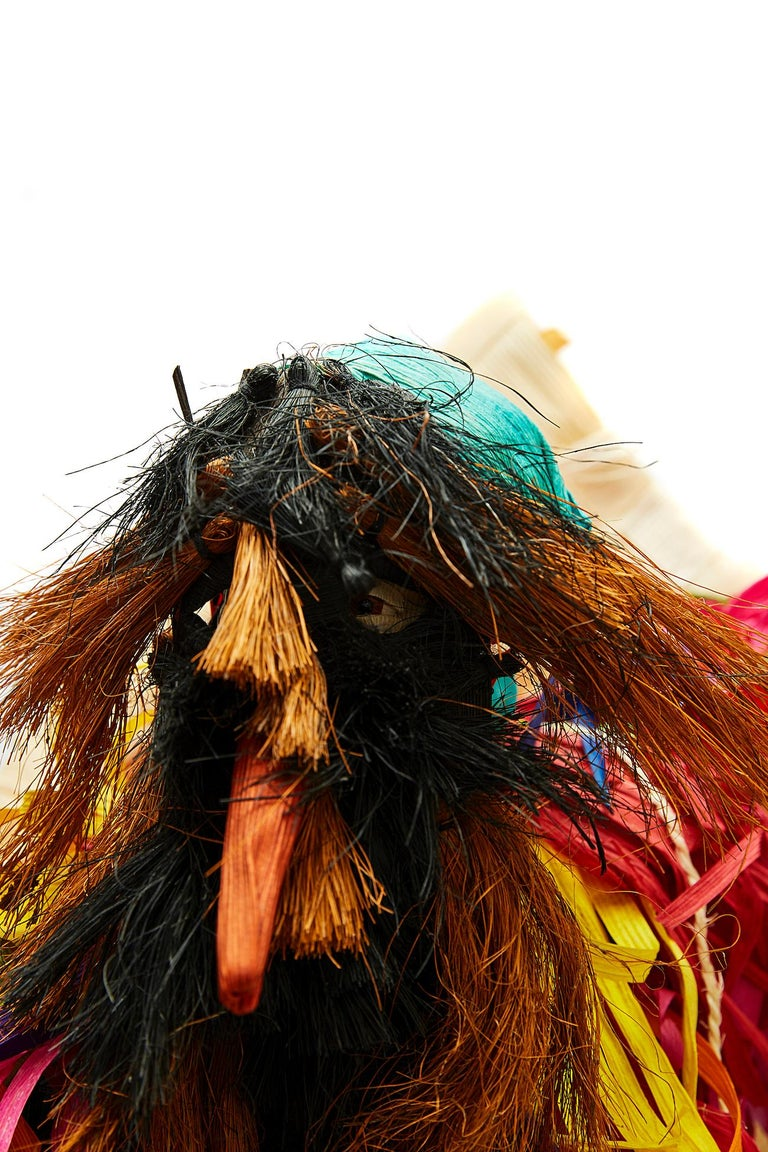 Tiliche de Putla - Mexican Folk Art  Cactus Fine Art For Sale 4