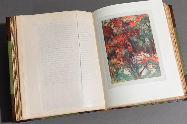 Margaret Waterfield, Flower Grouping in English, Scotch and Irish Gardens In Good Condition For Sale In New York, NY
