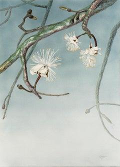 Fine and elegant Brasilian white flower on cerulean azure by italian painter