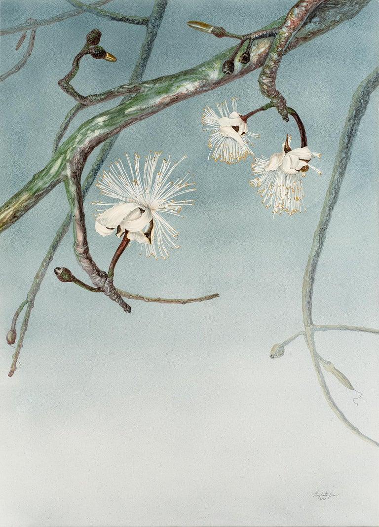 Margherita Leoni Figurative Painting - Fine and elegant Brasilian white flower on cerulean azure by italian painter