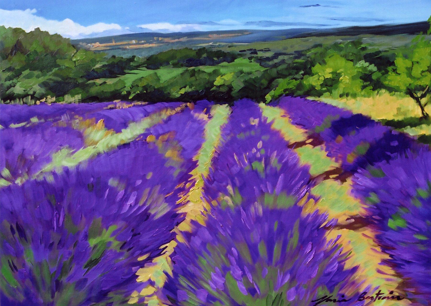 """St. Saturnin Lavender "" Contemporary Impressionist Oil Painting, Maria Bertran"