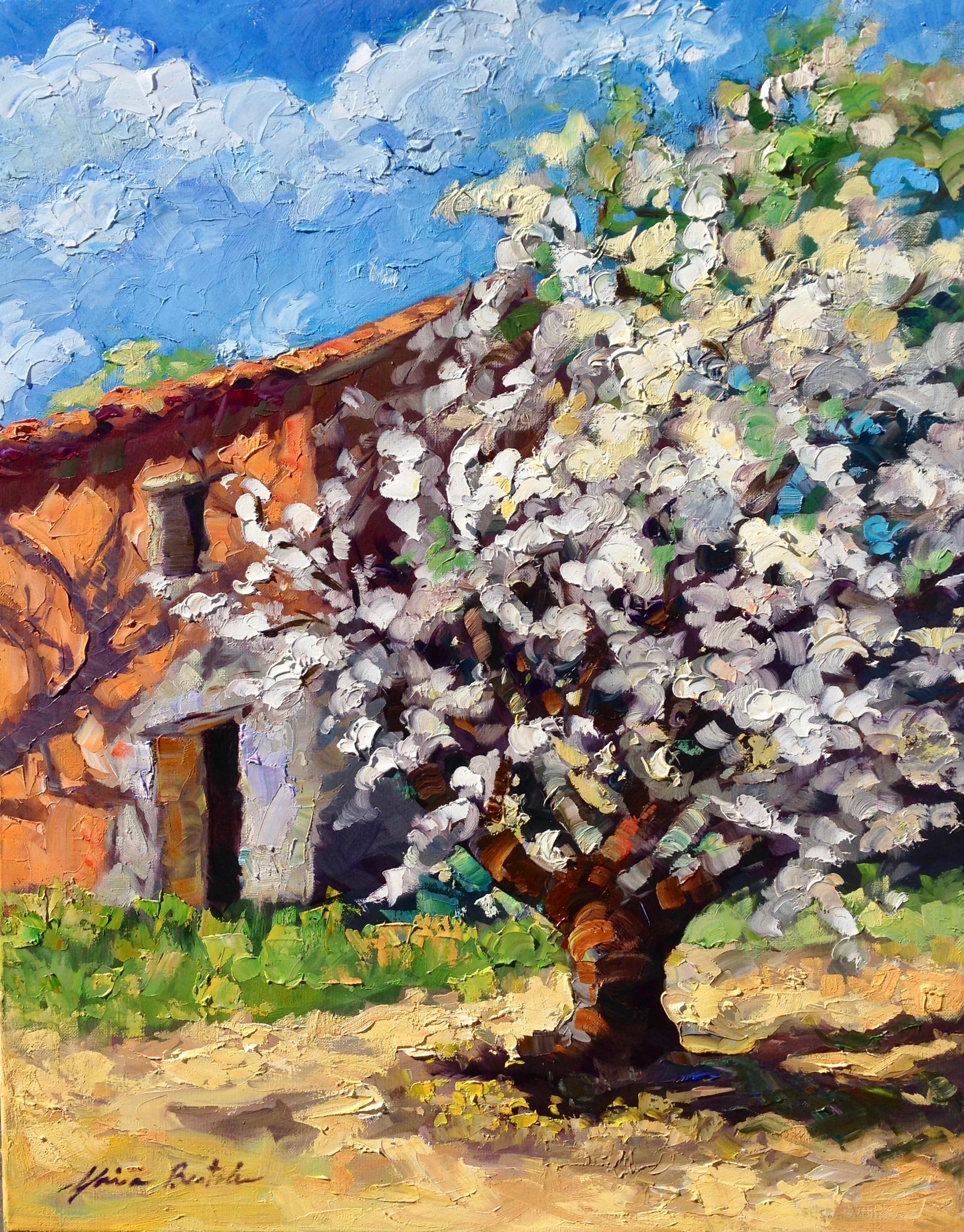 """""""Last Blossoms of Spring""""  Contemporary Impressionist Oil Painting of Provence"""