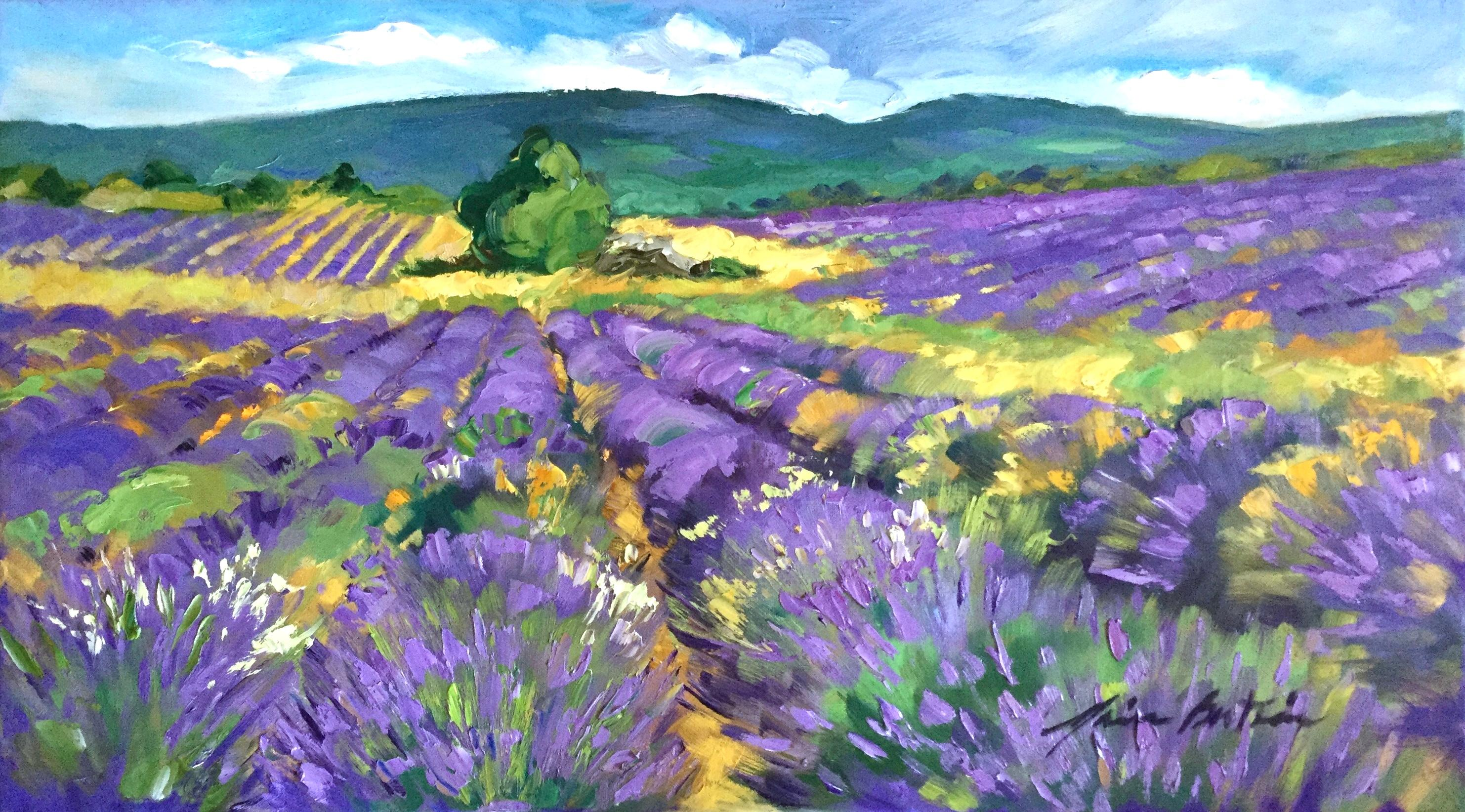 """""""Sault Lavender"""" Contemporary Impressionist Oil of Provence"""