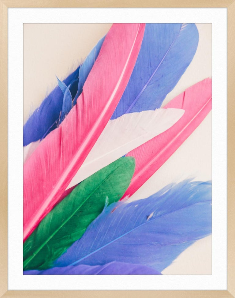 Feather or Not 10 For Sale 1