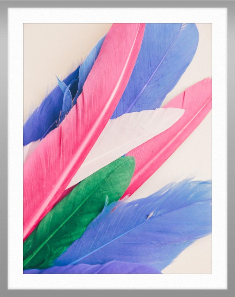 Feather or Not 10 For Sale 2