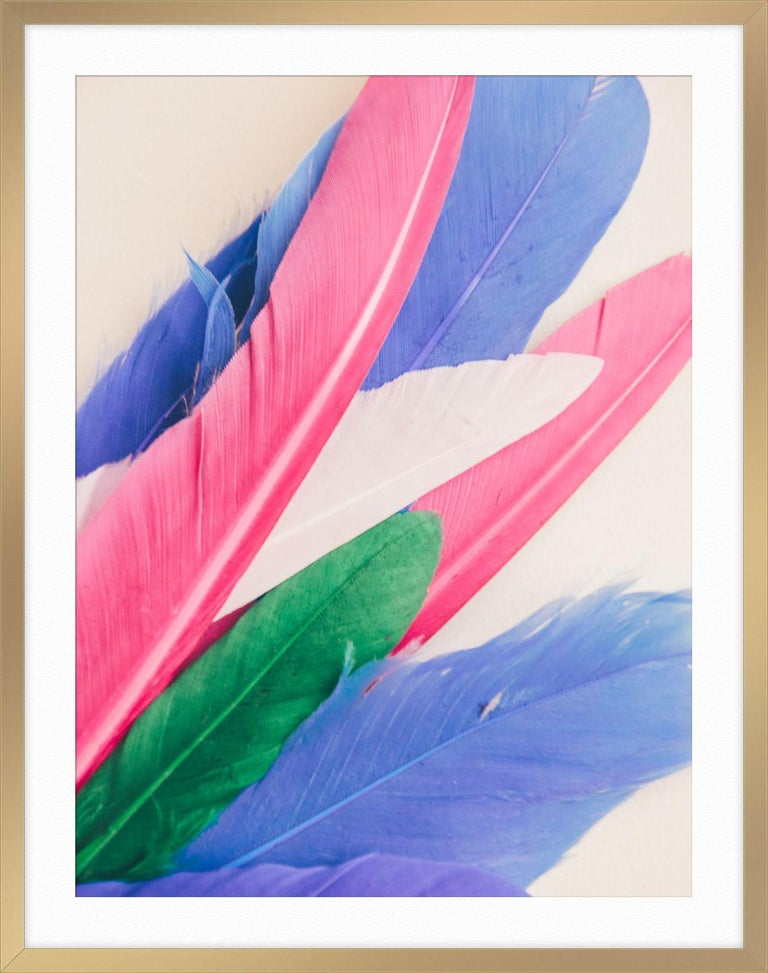 Feather or Not 10 For Sale 3