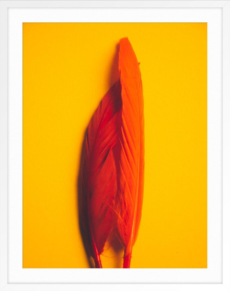 Feather or Not 2 - Orange Abstract Print by Maria Piessis