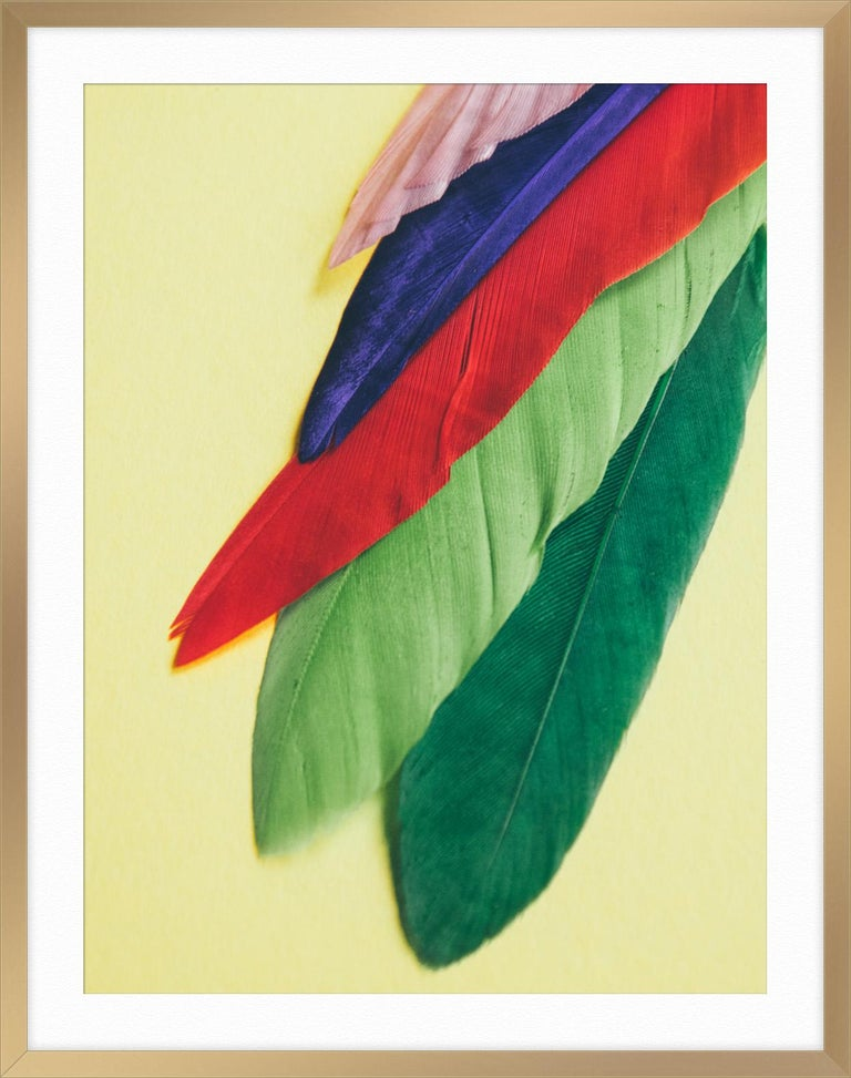 Feather or Not 3 - Green Abstract Print by Maria Piessis