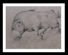 Bull original realist  drawing painting