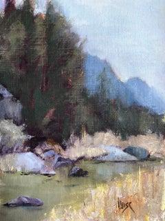 Stream (reflections, verdant landscape, mountain silhouettes)