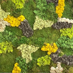 Viridi #53- framed abstract moss garden wall composition green, yellow and grey