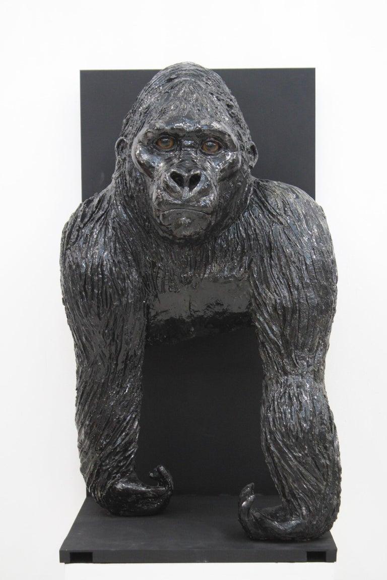 Gorilla For Sale 12