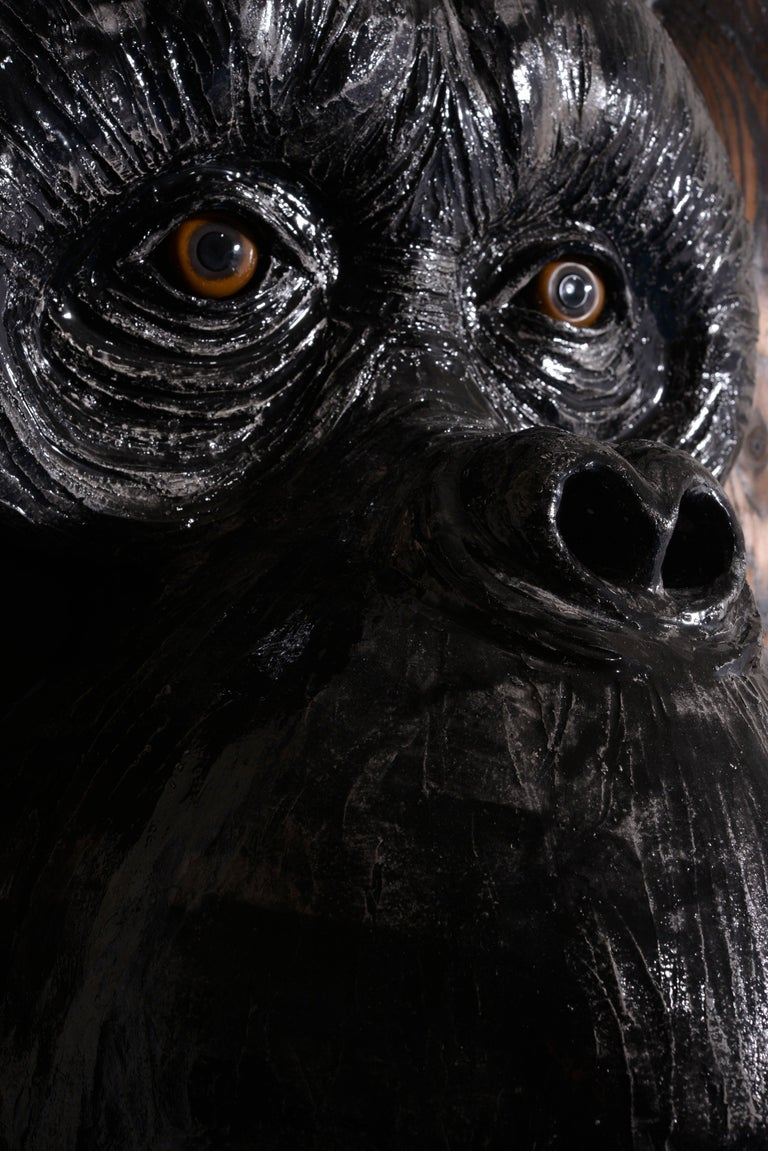 Monkey's Face For Sale 5