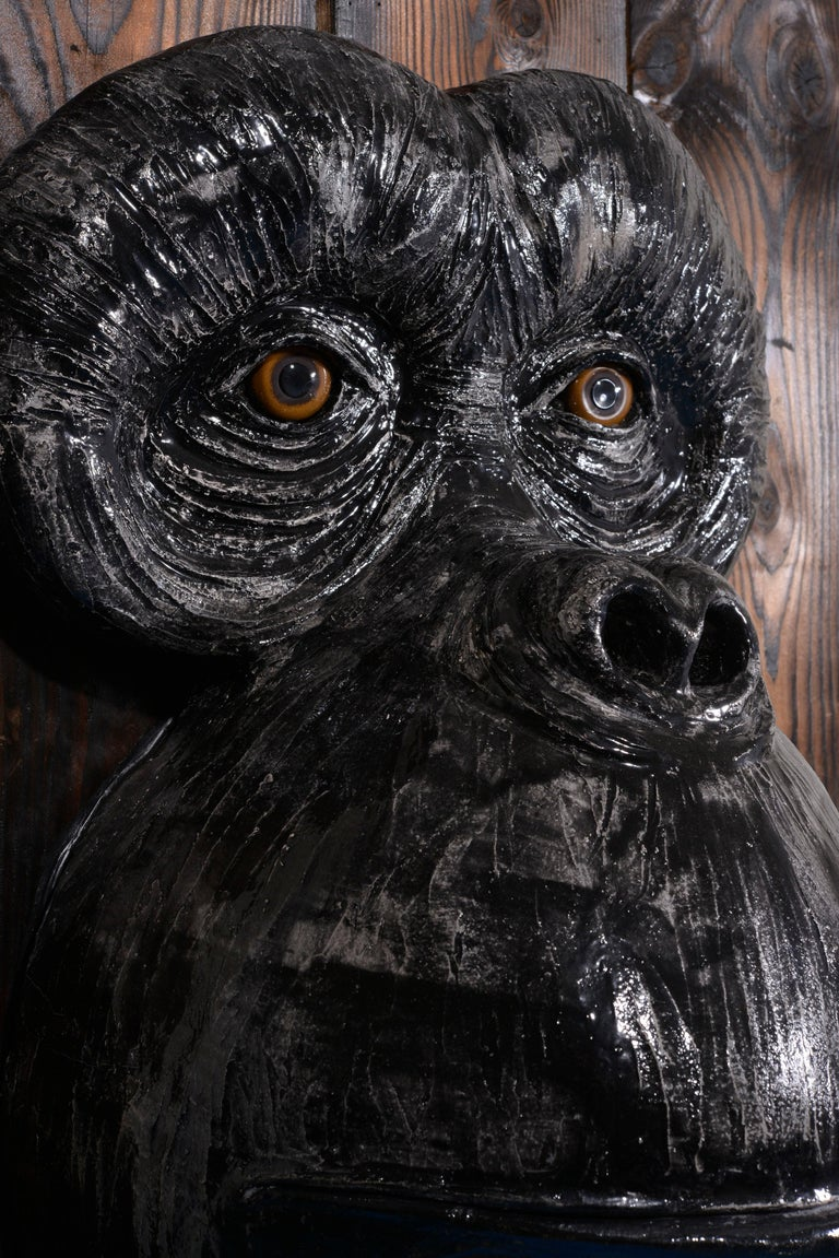 Monkey's Face For Sale 6