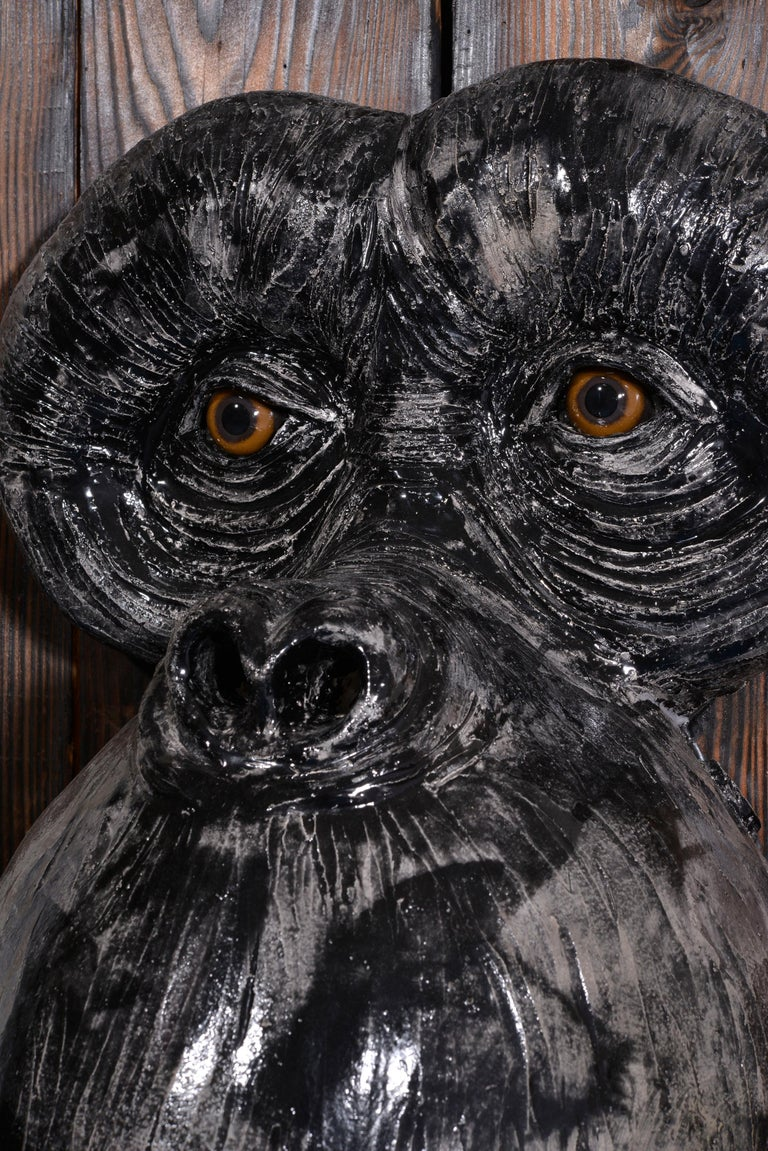 Monkey's Face For Sale 7