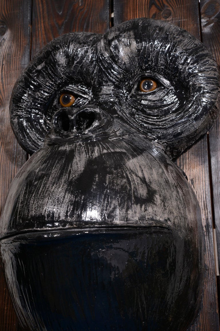 Monkey's Face For Sale 8