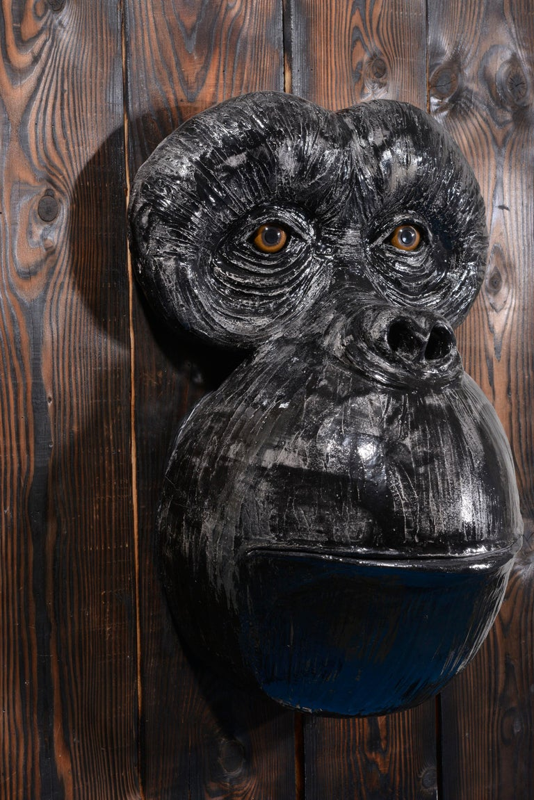 Monkey's Face For Sale 9