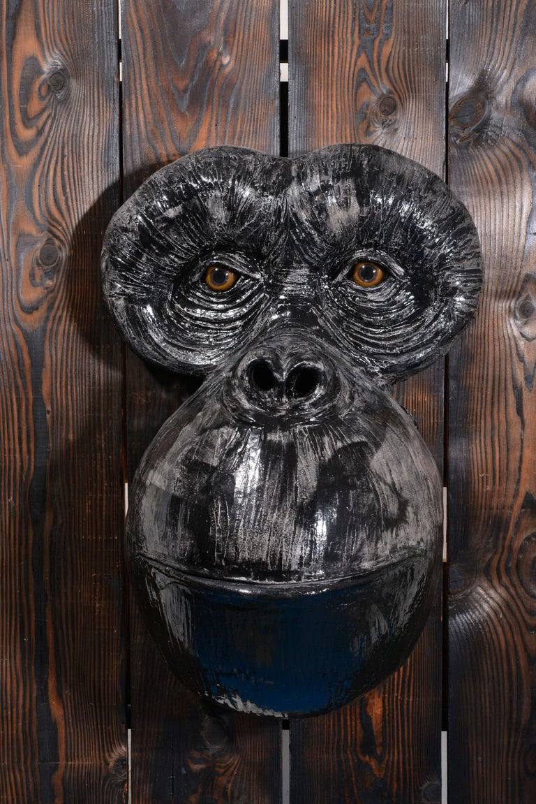 Monkey's Face For Sale 10