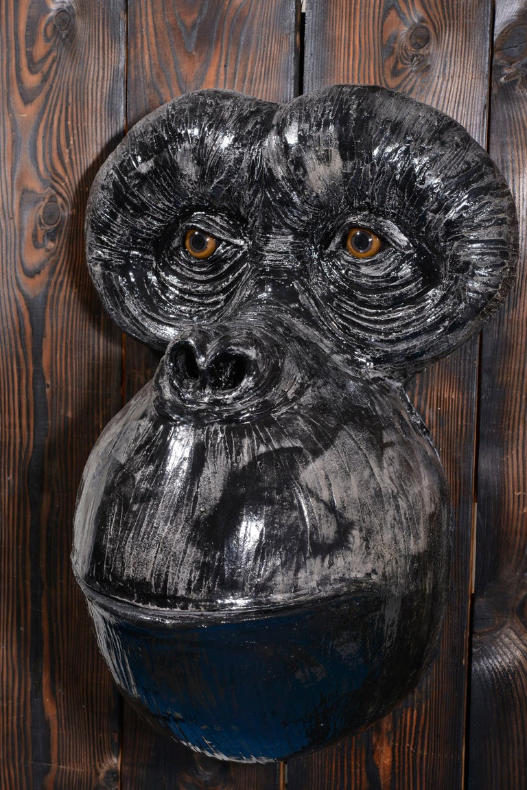 Monkey's Face For Sale 11