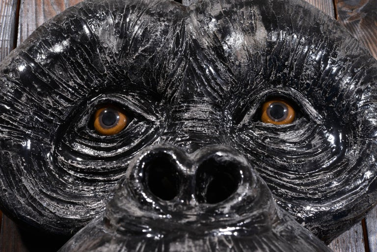 Monkey's Face For Sale 13