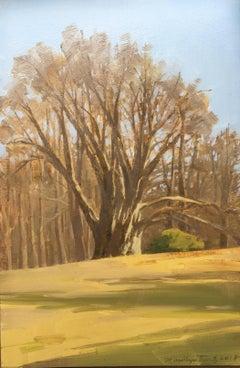Marilyn Turtz, Old Tree, impressionist oil on wood landscape painting, 2018