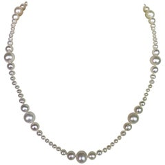 Marina J. Graduated White Pearl Bridal Necklace with 14 Karat Yellow Gold Clasp